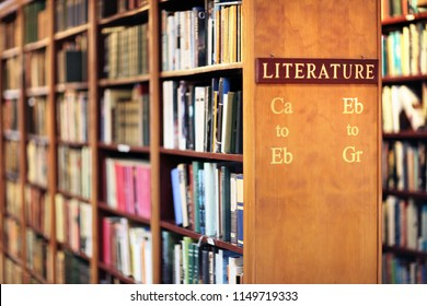 Library with books on shelf literature concept