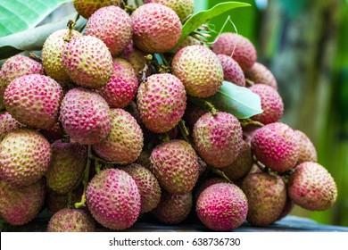 lichee, Litchi  fruits, Scientific name Lichi chinensis Sonn