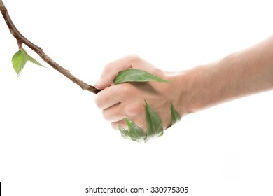 Life Concept. Hand holding twigs look like hand