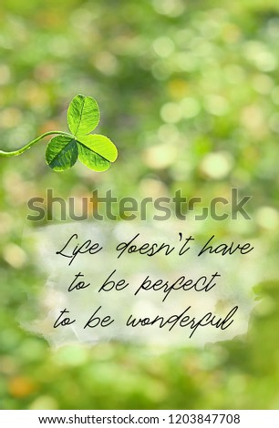Life Have Be Perfect Be Wonderful Stock Photo Edit Now 1203847708