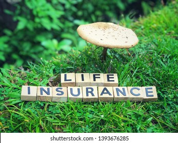 Life Insurance concept - Life Insurance written on wooden blocks.