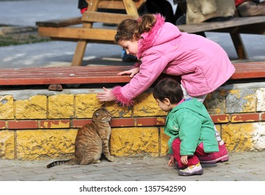 Life in Istanbul Cat and children /Eyup,Istanbul,Turkey,February 2012