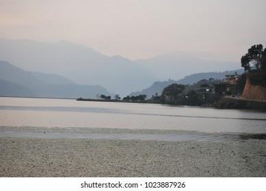 Life in lake. Nepal