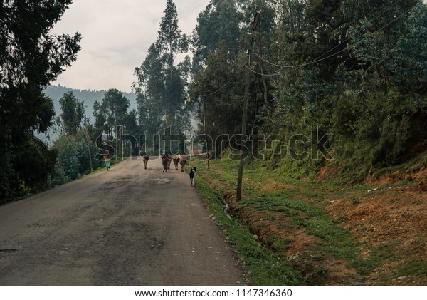 Life on Mount Entoto in Ethiopia