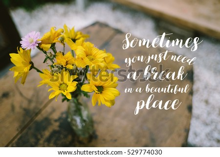Life Quote Inspirational Quote On Blurred Stock Photo Edit Now