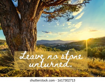 Life Quote: Leave no stone unturned