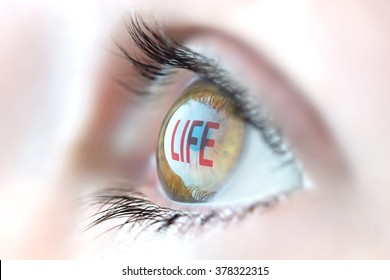 Life reflection in eye.