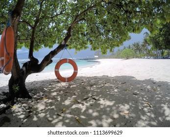 Life rings hanging on tree on beach on Upolu Island, Western Samoa, South Pacific