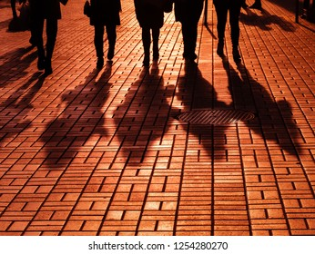 Life style concept. Light and shadows in city. Silhouettes of people walking the streets of a big city and lit by back light. Shadows of people walking street in evening light.