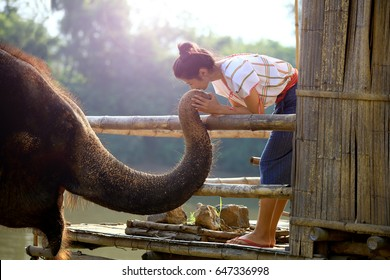 Life style of elephant and woman mahout at elephant camp in Kanchanaburi province ,Thailand , attractive woman stand on wooden hurt stooping kiss on trunk of her elephant