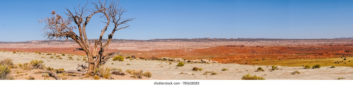 Lifeless desert wasteland of Utah