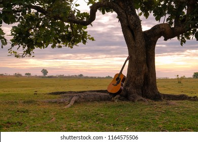 lifestyle concept picture of relaxing on holiday trip with a guitar under a lonely tree.