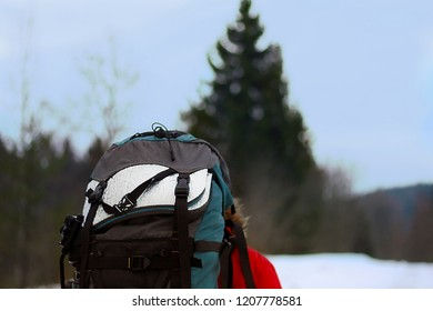 Lifestyle hiking camping equipment. Backpack and thermos outdoor forest nature