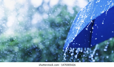 Rainfall Hd Stock Images Shutterstock Find & download the most popular rain photos on freepik free for commercial use high quality images over 7 million stock photos. https www shutterstock com image photo lifestyle scene rainy weather blue umbrella 1470305426