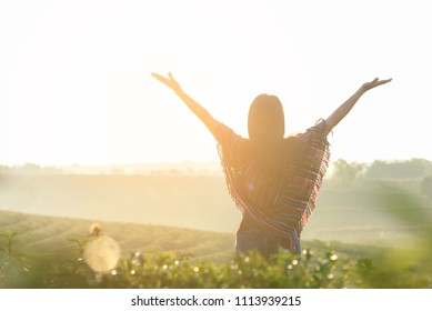 Lifestyle traveler women happy feeling good relax and freedom facing on the outdoors natural tea farm in the sunrise morning, Thailand. Travel Concept