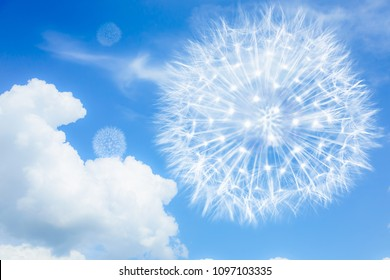 Light and airy dandelions on a blue background with clouds. Blowballs as a symbol of lightness, low-calorie food, travel and flight.