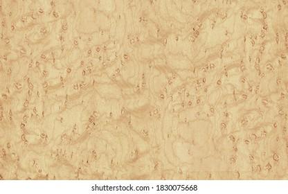 Light birdseye maple veneer texture
