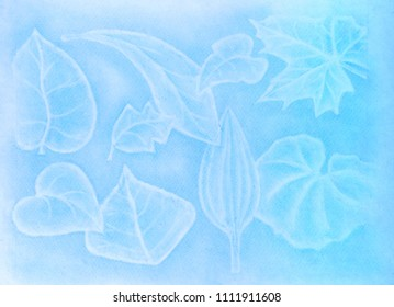 light blue draw of leaves, made with pastels on raw white paper