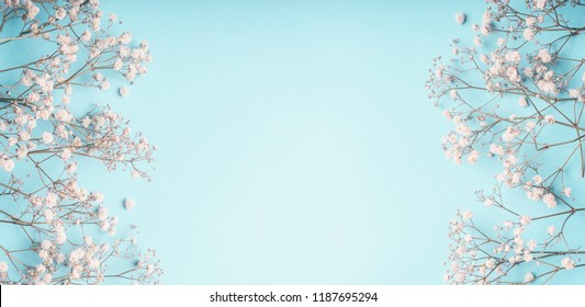 Light blue floral background frame with white Gypsophila flowers. Baby's-breath flowers on pastel blue layout , banner