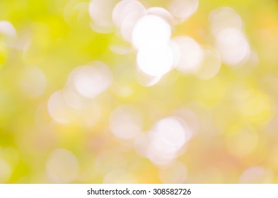 Light bokeh abstract background from nature
