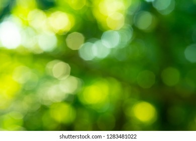 Light bokeh, Abstract blurred background