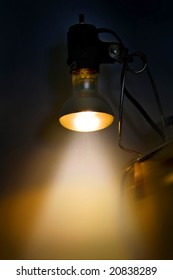 light bulb - concept
