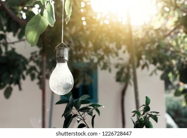 Light bulb in the garden at sunset, image with retro filter, moody  picture