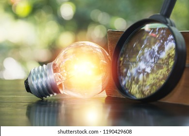 A light bulb for innovation and creative concept on nature background.