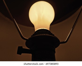 Light Bulb in Lamp