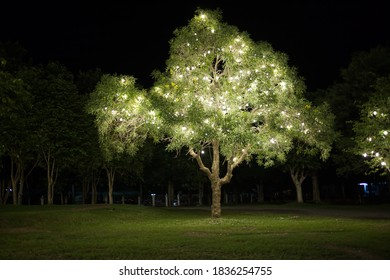 Light bulb on the tree in public park preparing of christmas festival is coming.
