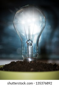 A light bulb in pot with soil