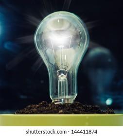 A light bulb in a soil