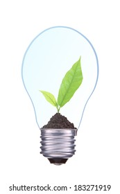 Light Bulb with soil and young green plant isolated on white