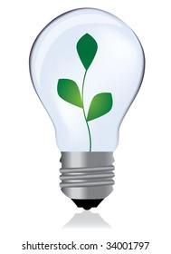 Light bulb whit plant