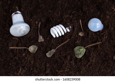 Light bulbs of different types in the soil with wilted dying plants, leaves. Environmental damage and pollution. Land contamination and destruction. Subsequent proper recycling and disposal