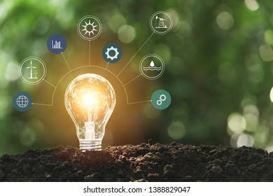 Light bulbs with glowing one. technology and creativity concept with light bulbs.