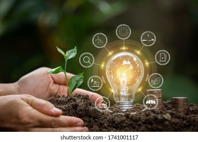 Light bulbs that grow, in the concept of energy in nature. - Shutterstock ID 1741001117