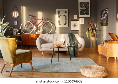 Light color sofa, green carpet, vintage armchair, sideboards, gramophone and red bicycle against dark wall with posters in a living room interior