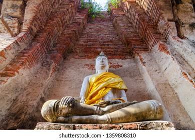 Light of Dharma