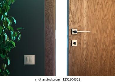 Light a door ajar. Wooden door in a beautiful interior