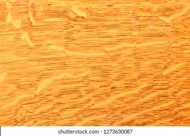500 Quarter Sawn White Oak Pictures Royalty Free Images Stock