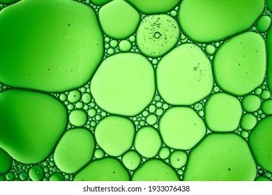 Light Green Background Closeup of Oil Drops in Water. Abstract Macro Photo of Liquid Surface with Bubbles. Bright Design of Structural Watery Texture.
