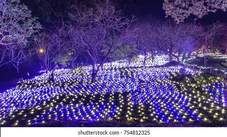 Light Illumination in a japanese garden in nara Japan.