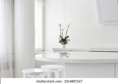 A light and modern home office kitchen in Finland. A clean interior with a white orchid reflecting from the table surface
