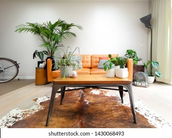 Surprising Cowhide Rug Images Stock Photos Vectors Shutterstock Bralicious Painted Fabric Chair Ideas Braliciousco