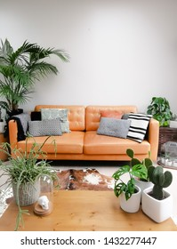 Light modern living room with brown leather couch, cowhide rug and numerous green houseplants creating an urban jungle