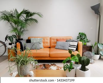 Strange Cowhide Images Stock Photos Vectors Shutterstock Bralicious Painted Fabric Chair Ideas Braliciousco