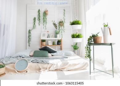 Plants Bedroom Images Stock Photos Vectors Shutterstock
