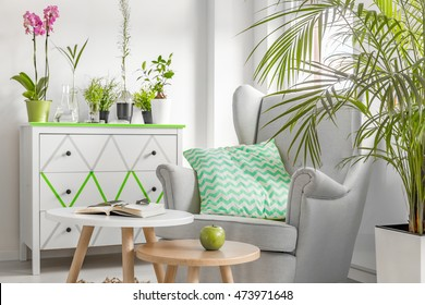 Light, new style living room with white coomode, armchair, small table and decorative houseplants