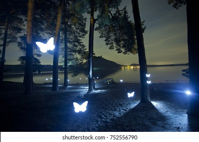 Light painting butterfly in the forest